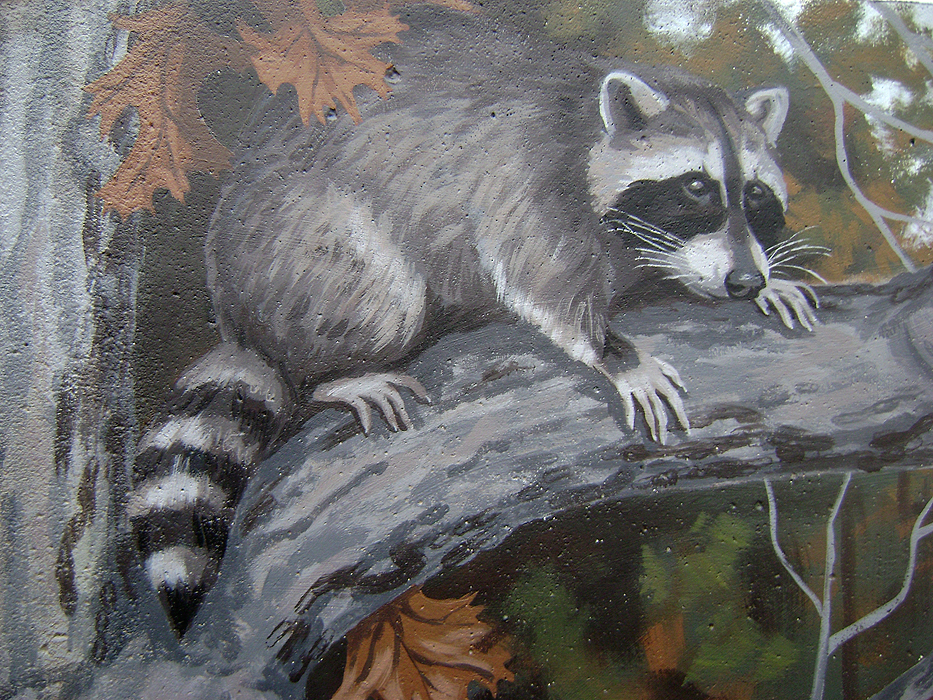 Coon Hunt Mural Fine Art And Portraits By Lena Quagliato