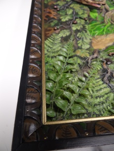 Detail of 3-D ferns