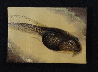 Tadpole Mini painting