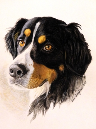 """Gunnison."" Watercolor Pet Portrait"