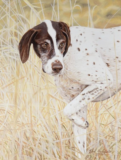"""Charlee"" German Shorthair. 16x20"" oil portrait"